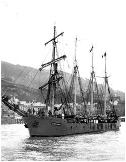 abacalao04